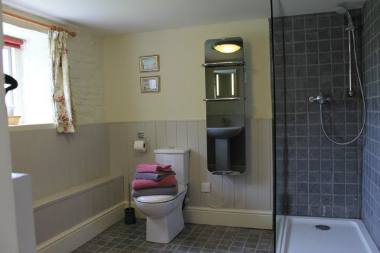 White House at Brinsop: shower room, Eric Dee's cottage
