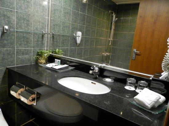 Metropark Hotel : Санузел
