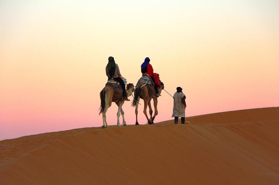 Sahara Aventures Travel -Day Tours: Desert Sunset
