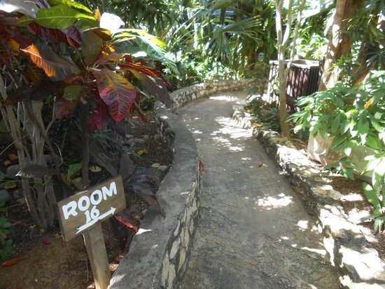 Rockhouse Hotel: private walk way to villa 16 -- everything feels so private and intimate!