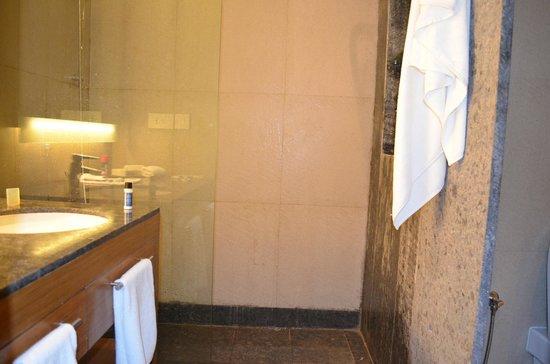 Hyatt Place Hampi : Bath