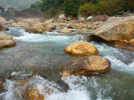 Near bindu dam