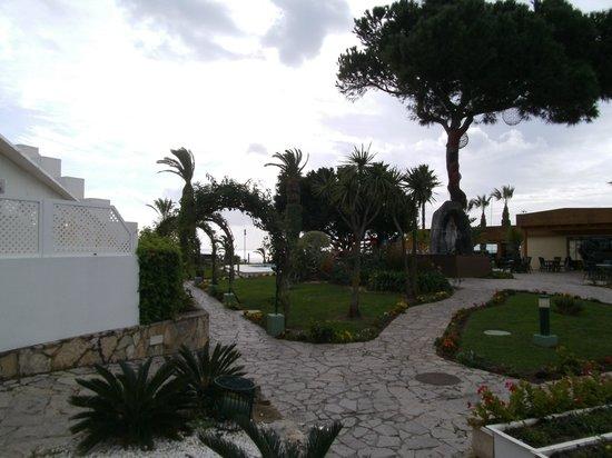 Muthu Clube Praia da Oura : Garden views