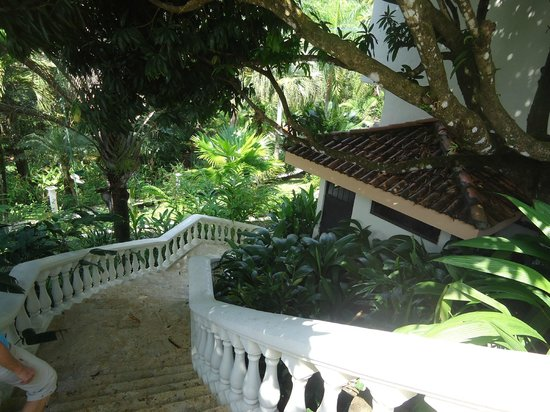 Parador Resort and Spa: A view of the grounds