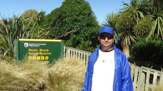Oamaru Blue Penguin Colony: Пингвинчики, я тут :)