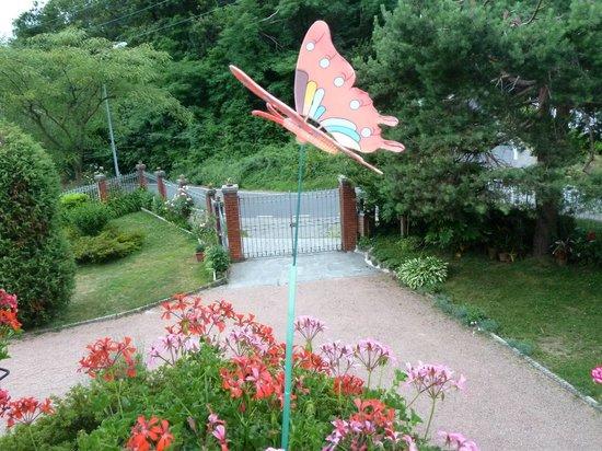 Ingresso propriet e posti auto con giardino foto di b b - Ingresso giardino ...