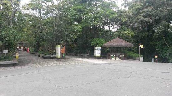 Sao Paulo Zoo: Vista interna de uma parte do zoo de São paulo.
