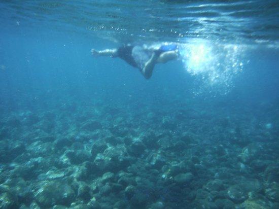 Double One Villas Amed II : Snorkelling