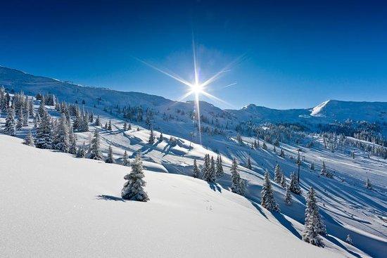 Ski Planneralm