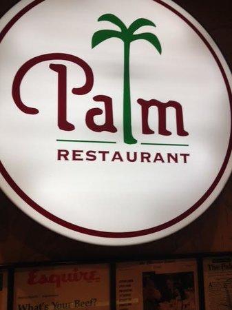 The Palm: logotipo