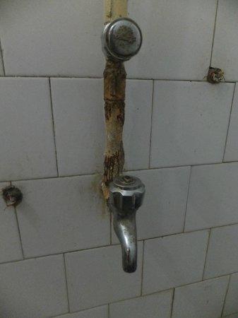 Hotel Tridev Villa : That's what they call bathroom