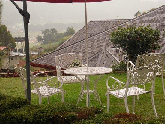 Tea Bush Hotel : Garden