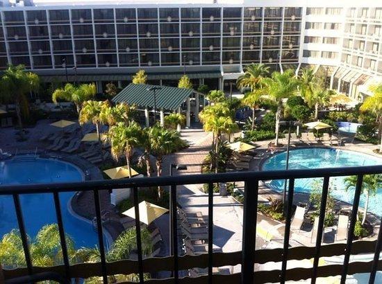 Sheraton Orlando Lake Buena Vista Resort: Vista do nosso quarto para as piscinas!