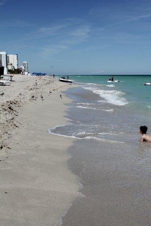 Fontainebleau Miami Beach : пляж