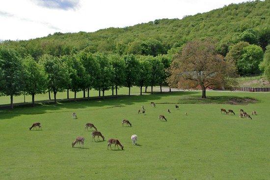 Parco Provinciale Monte Fuso