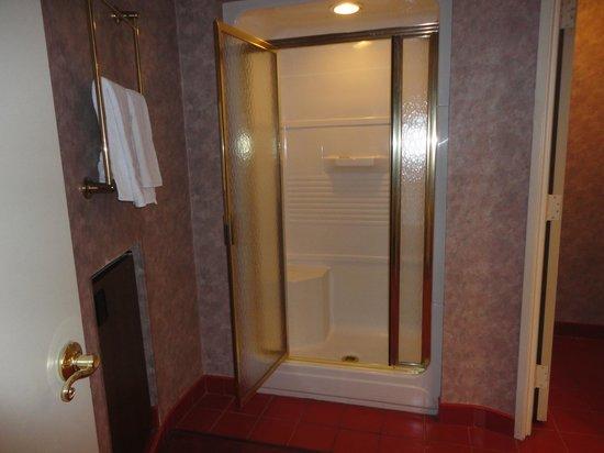 Pocono Palace Resort: Shower in The Garden of Eden Apple