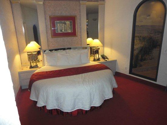 Pocono Palace Resort : Bed The Garden of Eden Apple