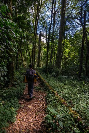 Pipeline Trail: Hiking the pipeline