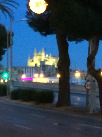 TRYP Palma Bellver Hotel : View from near the hotel