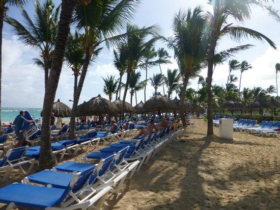 Grand Bahia Principe Bavaro : Praia do Hotel