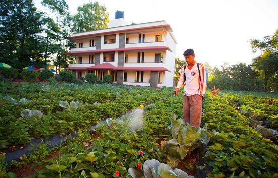 Shivsagar Farmhouse: Strawberry Farming