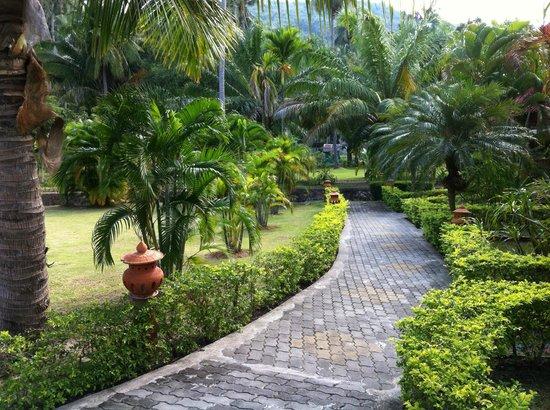Longbay Resort : allée du jardin