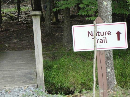 Cove Haven Resort : Cute Nature Trail