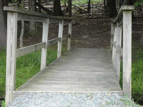 Cove Haven Resort : Heading on the Nature Trail