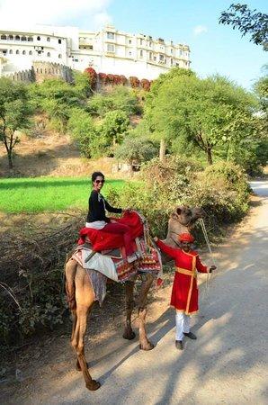 RAAS Devigarh: Camel ride
