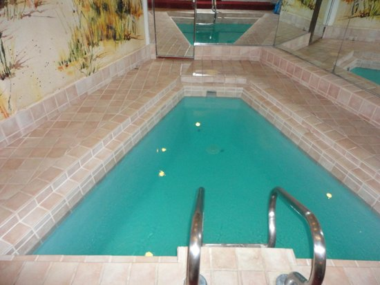 Cove Haven Resort : Our Pool in the Suite