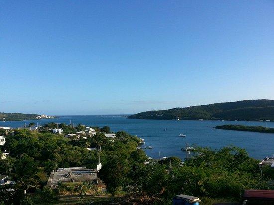 Ensenada Bay view from a hammock @ Casa Robinson