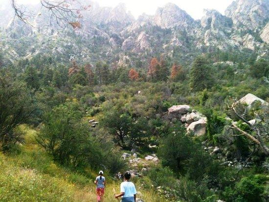 Aguirre Spring National Recreation Area: Un poco mas de la mitad del camino