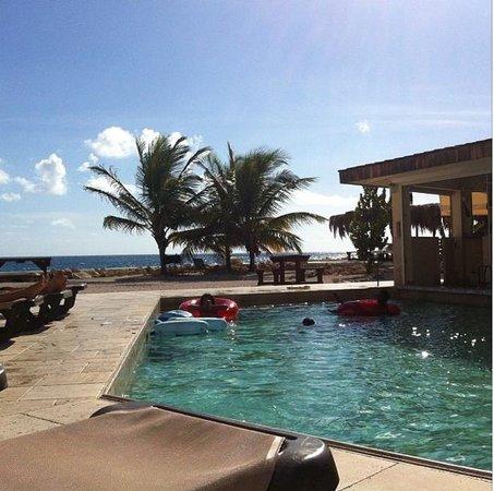 The Dream Pool Bar