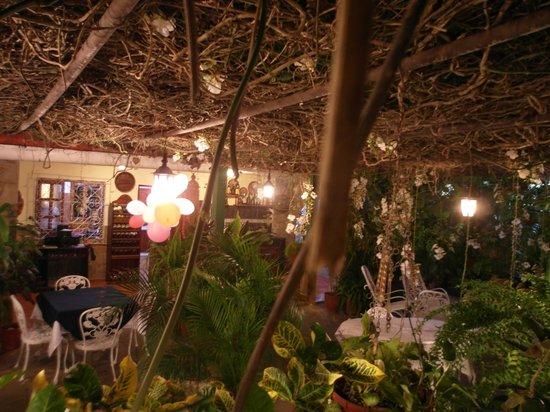 Hostal Villa Dalia: patio
