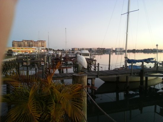Barefoot Bay Resort and Marina : Morning view from hotel deck.