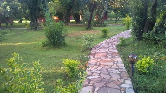 Mara Chui Camp : the pathways at Ole Kagwe Lodge