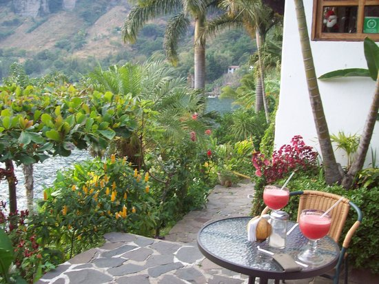 Jinava Hotel & Restaurant: giardino
