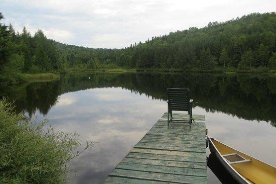 Gite la Mi-Temps : le lac rempli de truites !