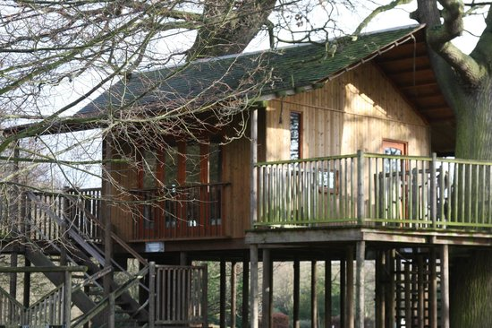 De Vere Theobalds Estate: dangerous tree house had been left open