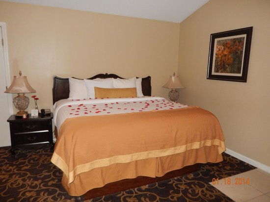 Belamere Suites : Romance package includes rose pedals on the bed