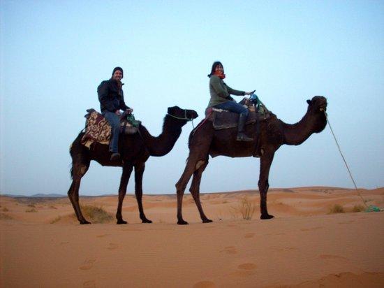 Your Morocco Tour LLC - Day Tours : Camel Trek into the Sahara