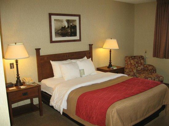 Comfort Inn: One Queen Bed