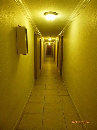 Runway Inn: Hallway to rooms