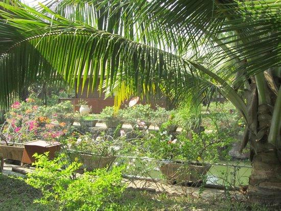 Resort Primo Bom Terra Verde: Территория отеля