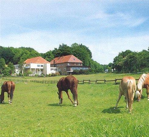 Gasthaus zum Doerenberg : Idylle pur...