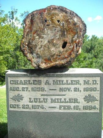 Spring Grove Cemetery & Arboretum: Head Stone