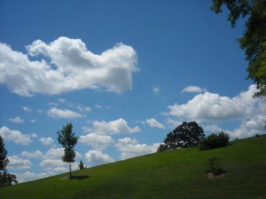 Spring Grove Cemetery & Arboretum: Sky