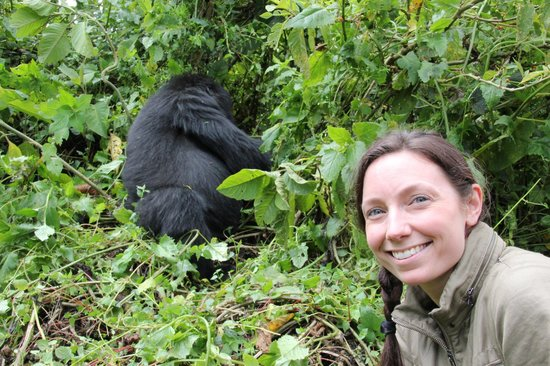 Le Bambou Gorilla Lodge: Susa group trek was so awesome!