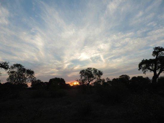 andBeyond Ngala Tented Camp: Game Reserve