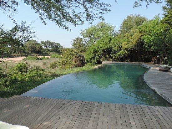 andBeyond Ngala Tented Camp: Pool